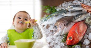 ทารกกินปลาได้ไหม